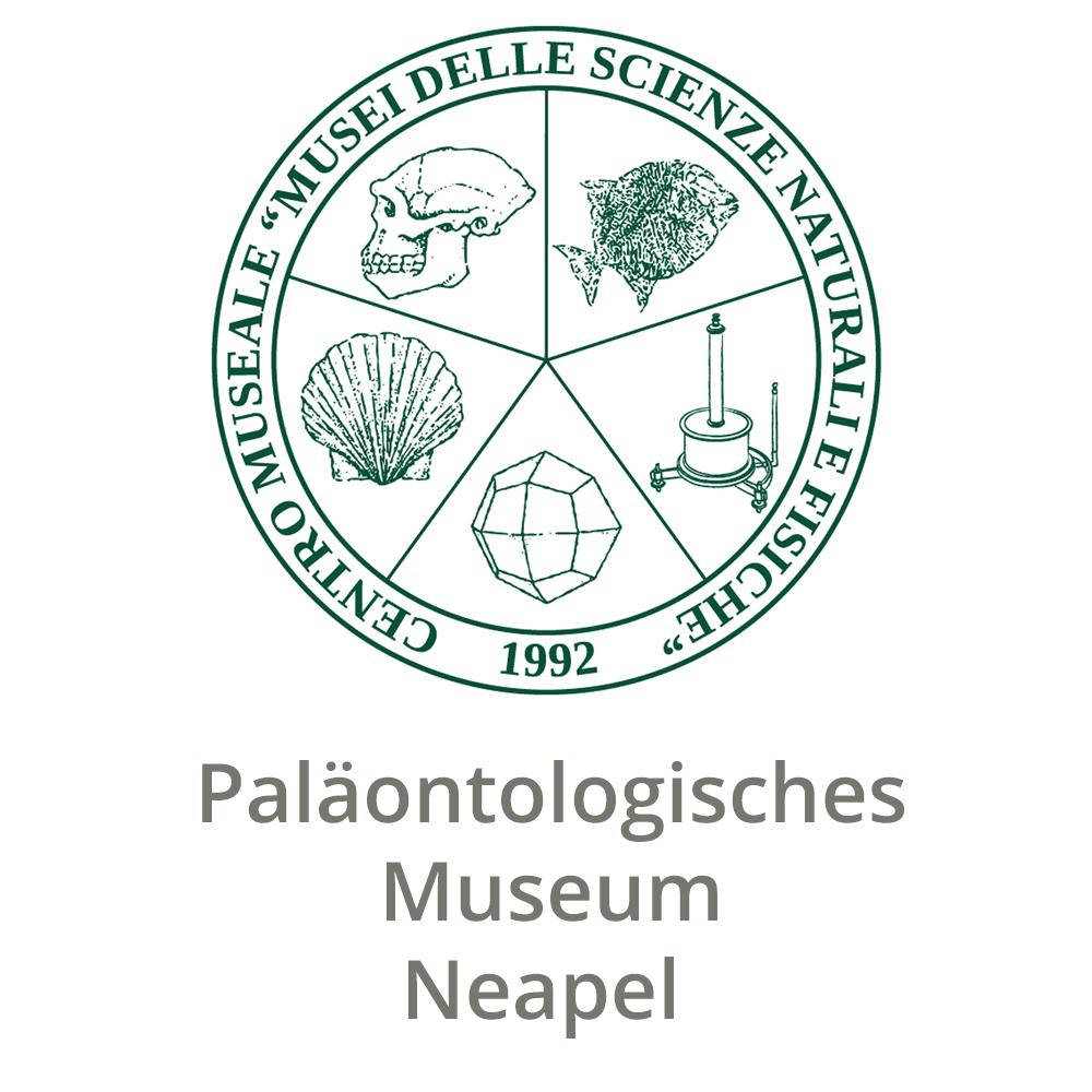 Paläontologisches Museum Neapel